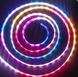Flexible LED Strip Light 5050 RGB LED Strip