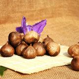 Allium Sativum L. Aged Black Garlic Powder? ? ? ? 900g