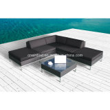 Rattan Furniture Sofa Set for Outdoor with Aluminum Feet (9509AU)