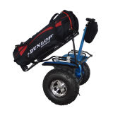 High Quality Self Balancing Golf Scooter with Golf Holder