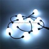 DMX512 Madrix RGB Pixel Ball Light