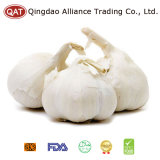 Pure White Garlic with Good Price