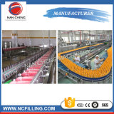 Stainless Steel Juice Filling Machines