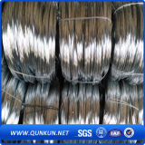 0.3mm 10kgs Per Roll Stainless Steel Wire with Factory Price
