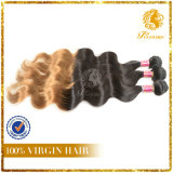 Top Quality T-Color Virgin Remy Human Hair Body Wave Hair Extension (TFH-NL0034)