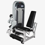 Seated Leg Extension Cheap Home Gym Fitness Equipment with Factory Price