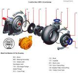 Belt for Slurry Pump Motor Belt