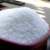 High Quality White Sugar/Refined White Crystal Sugar