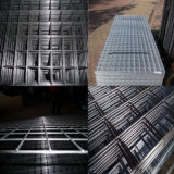 Stainless Steel Welded Wire Mesh or Galvanized Welded Wire Mesh Fence