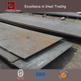 Ss400 Hot Rolled Steel Sheet (CZ-S03)