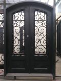 Elegant and Antique Wrought Iron Doors and Gates Design (UID-D159)