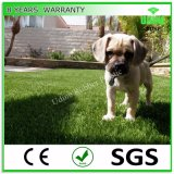 Artificial Grass for Dog and Pet Runs