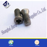 Carbon Steel or Stainless Steel T8 Torx Screw