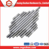 Stainless Steel 316 Double Head Stud Bolt/Thread Rod