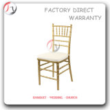White Cushion Gold Metal Chiavari Chair Furniture (AT-52)