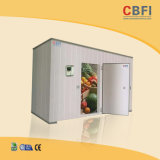 Vegetable Cold Room for Sale