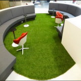 Easy Installation Artificial Grass for Cozy Little House