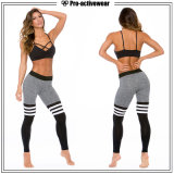 Free Sample Sport Bra Ladies Yoga Leggings Sports Yoga Wear