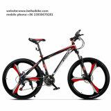 Wholesale Aluminum Alloy One Piece Wheel Mountain Cycle