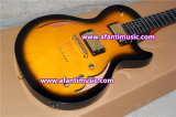 Hollow Body Style / Gold Parts / Afanti Electric Guitar (AHY-659)