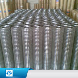 Galvanized/PVC Coated Welded Iron Wire Mesh