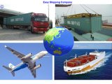 Consolidate Shipping Service Form China to New York Logistics Service