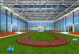 Structural Building/Steel Stadium/Sports Stadium Arena (SS-92)