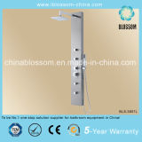 Modern Design Massage Stainless Steel Shower Panel (BLS-3857L)