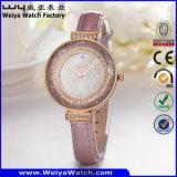 Fashion Factory Leather Strap Quartz Ladies Custom Watch (Wy-101B)