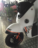 Retro Electric Motorcycle Popular in Europe