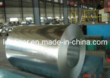 Galvanized Steel Coil (S550GD+Z) Type: Structural Steel