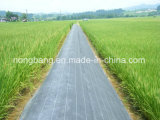 Agricultural PP Weed Control Mat Ground Cover Net
