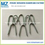 Galvanized Bright Iron Diamond Cut Point U Fence Staples Nail