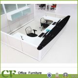 Information of Office Furniture, Information Desk Receptionist (CD-T10-5508)