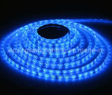 LED Flexible Strip Light 12V 3528 60LEDs/M (XXW-LS-3528R)