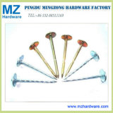 """9g*2.5"""" Colorful Plating Umbrella Head Twisted Screw Roofing Nail"""