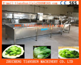 Ozone Machine Bubble Apple Industrial Fruit Washing Machine Tscq-3000