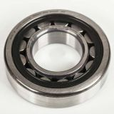 Hot Sales! Cylindrical Roller Bearing Nu204