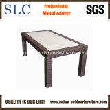 Wicker Table/Rattan Coffee Table/Fancy Coffee Table (SC-B1078-5)