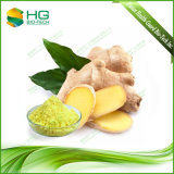 Hot-Selling Water Soluble Ginger Root Extract