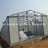 Steel Structures for Algeria Market (LTX317)