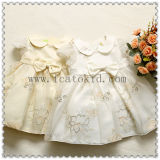 Cpsia Standard Spring Summer Baby Party Dress for 2 Years Old Baby