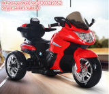 Electric Motorcycle Material Kids Ride on Plastic Motorcycle