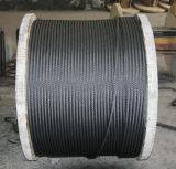 Steel Wire Rope 6X19 Galvanized /Ungalvanized Reel Packing