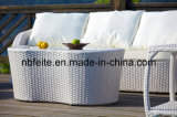 Outdoor / Rattan / Garden Furniture - Wicker Sofa (FT1053)