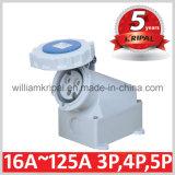 IP67 16A 2p+E Cee Electrical Socket