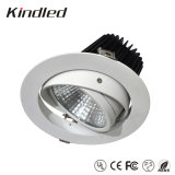 LED Downlight/LED Down Light 20W