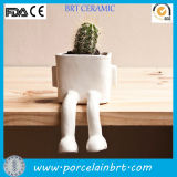 Unique China White Sitting Bonsai Plant Pots Wholesale