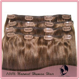 Remy Human Clip in Hair Extension (GH-CH002)