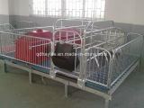 Pig Gestation Stall Farrowing Crate
